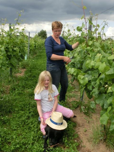 Fier op wijn van eigen bodem