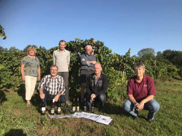 zes samenwerkende achterhoekse wijnbouwers produceren winnende wijnen